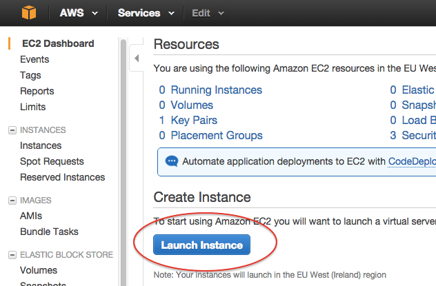 Launching a server on Amazon Web Services - deployment
